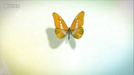 【醉清风制作】会声会影x6模板 简洁蝴蝶logo片头