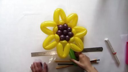 国外精品魔术气球高清教程之植物篇