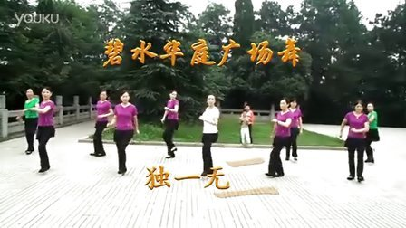 碧水华庭广场舞(独一无二)视频图片