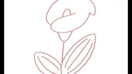 马蹄莲简笔画教程图片