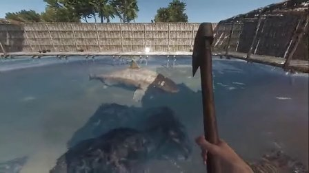 大海解说 深海搁浅 可以骑鲨鱼的鲨鱼池 第13期