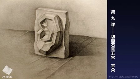 第一期 素描石膏切面五官 耳朵 教程