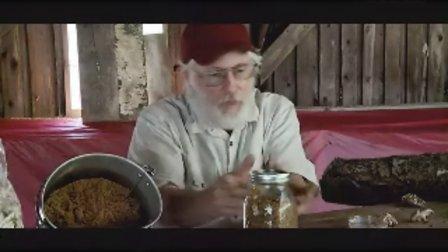 根据香菇的生命周期来栽培香菇技�c高清视频食用菌shiyongjun