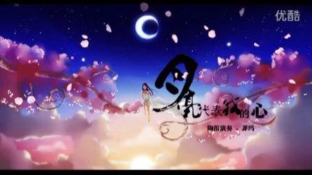 《月亮代表我的心》陶笛-菲玛