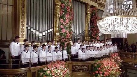 2016年维也纳新年音乐会·童声合唱(快乐的歌手法兰西波尔卡、假日旅行快速波尔卡)