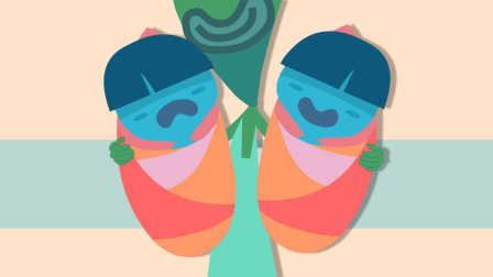 双胞胎是怎样炼成的 48