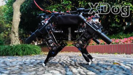 中国人打造国产机器狗 能跑会跳像猎豹