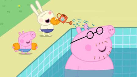 小猪佩奇动画片全集98图片大全_小猪佩奇动画