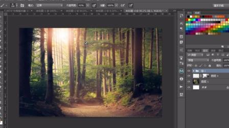 photoshop教程 PS调色教程-森林阳光照射效果制作