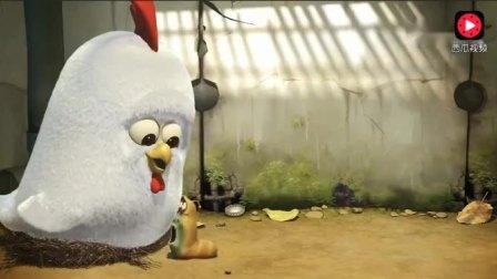 《爆笑虫子》被小鸡吃了小红, 好可怜
