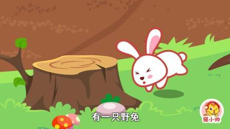 猫小帅故事守株待兔
