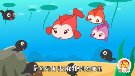 貓小帥故事小蝌蚪找媽媽