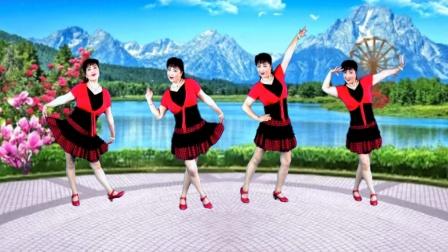 吕芳广场舞简单优美《美丽的遇见》正背面及分解动作