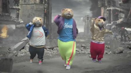 松鼠跳街舞的搞笑视频