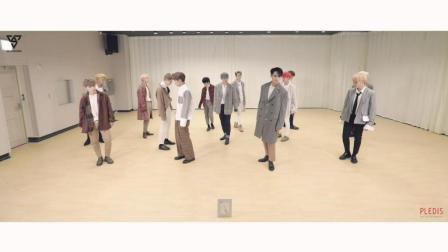【风车·韩语】SEVENTEEN《压低帽子》舞蹈练习