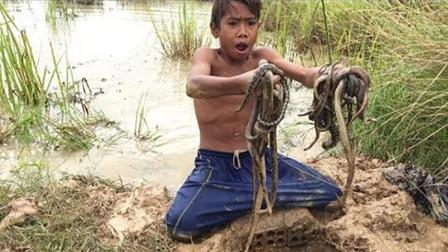 柬埔寨�r村的蛇�槭裁催@么泛�E? 看了�@��男孩抓蛇��l你就知道了