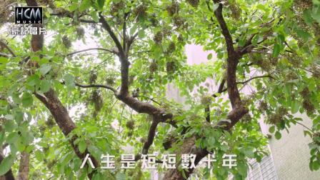龙千玉-爱珍惜(官方完整版MV)闽南语