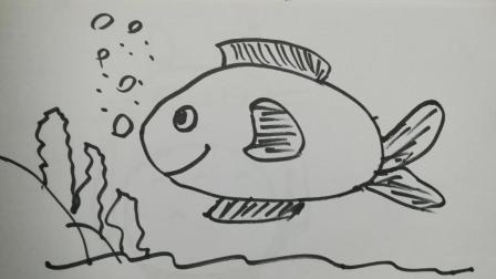 ,海鱼 –