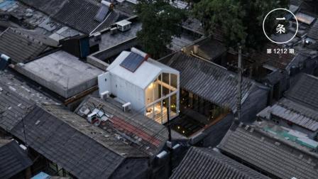 这才是北京和上海最不同的地方! 3个东北人说……