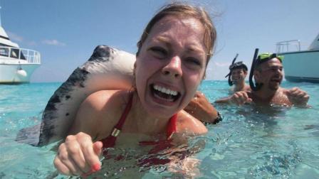 """这个岛成旅游热点, 功劳竟是一群""""水怪"""", 游客被吓哭了都要去!"""