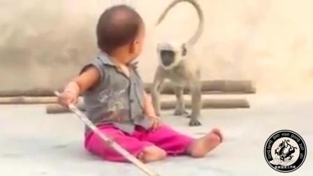 #搞笑视频##搞笑集中营##爆笑视频#小猴子和小孩