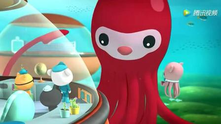 海底小纵队: 章教授和大王乌贼表哥总算有个完整
