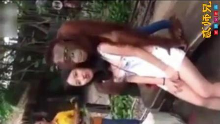【搞笑自拍】大猩猩教你撩妹套路: 妹子, 给哥笑