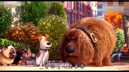动画片, 四川话搞笑配音! 太逗了!