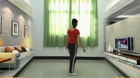广场舞鬼步舞速成广场舞鬼步舞大全十六步健身减肥舞教学视频