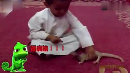 爆笑恶搞 笑疯了, 小孩用手不断拍打蜥蜴结果&