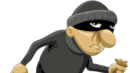 搞笑: 对于疯狂的小偷, 有的时候真无奈啊