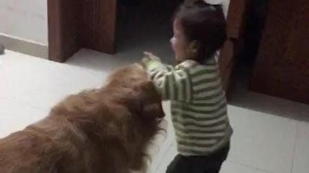 《爆笑来袭》这小孩为什么总是喜欢打狗, 闹着玩
