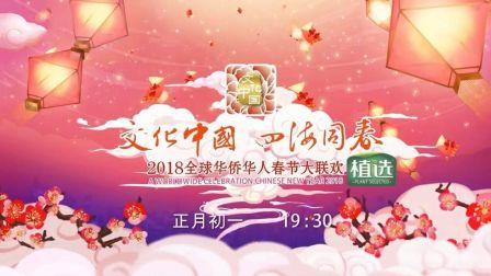 《文化中国 四海同春·2018全球华侨华人春节