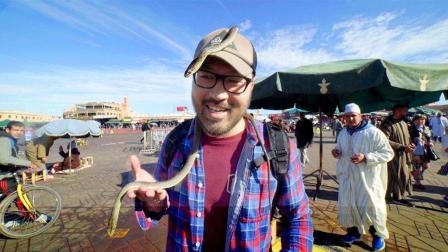战马广场游客与蛇共舞