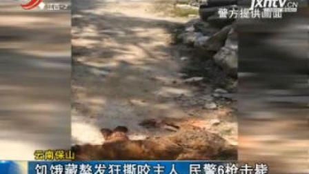 云南保山: 饥饿藏獒发狂撕咬主人 民警6枪击毙