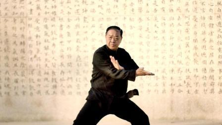 一家仨高手, 功夫巨星吴京的太极拳老师, 这位温县老爷子不得了
