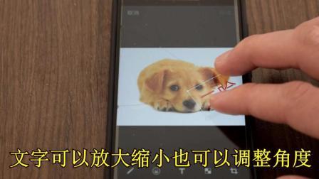 知道微信还添加表情图片,随意自制天气字人动态搞笑表情包带的图片