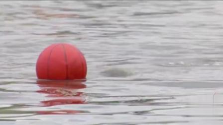 """国外恶搞视频: 沙滩水中捡球遇""""鳄鱼"""""""