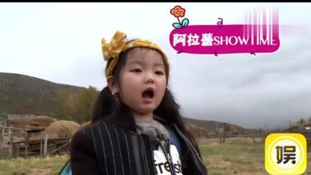 爸爸4阿拉蕾童言稚语频出金句 挑战甜馨综艺女王