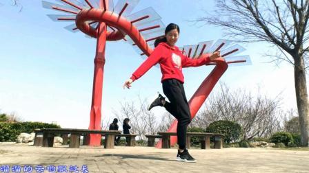 新生代广场舞 姑娘像朵花 入门鬼步舞 养眼 健身 三合一