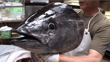 海魚之王! 頂級的還是頂級, 廚師切開后, 就知道它身價不菲
