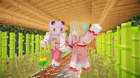 【五橙起源群岛】EP.3精致女孩的猪猪岛屿 我的世界minecraft