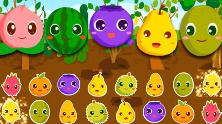 水果总动员水果英语大全儿童英语少儿英语ABC相关的图片