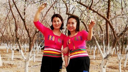点击观看《杏花林两大美女 32步广场舞 问禅师 京京广场舞 意境很足呀》