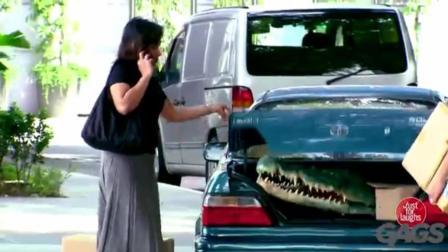 国外搞笑视频集, 歪果街头爆笑恶搞, 汽车后备箱