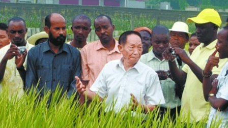 中国88岁科学家干了件大事, 多国感叹: 太逆天, 我们也想做中国人
