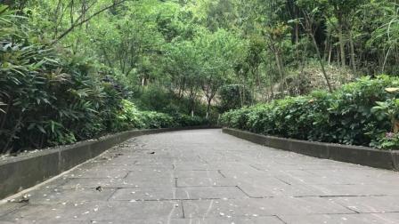 四川南充: 风景如此秀丽的西山, 仿佛置身于大自