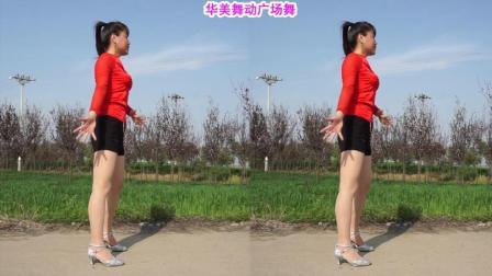 华美舞动广场舞 神曲火了 动感32步现代舞