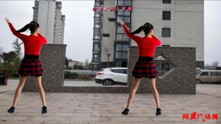 点击观看《阿真广场舞 天美地美中国美 中老年广场舞》