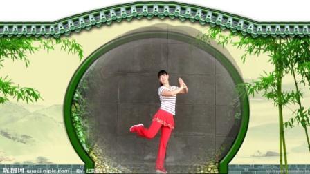 阿娜广场舞 姐妹的情义 广场舞教学 正背面口令分解 手把手舞蹈教学视频
